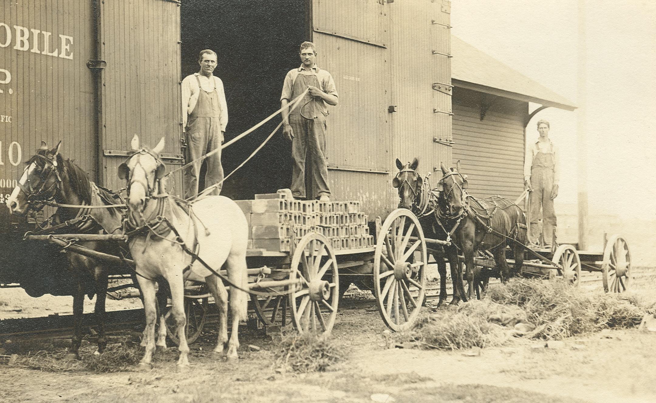 boelus men 1923-boelus 19, ong 17 1922-ashland 11, orchard 8 1921-trumbull 9, ashland 6  class n 1928-maywood 16, cedar bluffs 15 1927-plymouth 24, ohiowa 6.